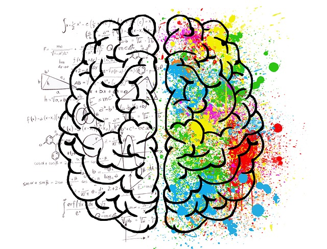 Image of a brain the left side is in black and white while the right side is multi-coloured